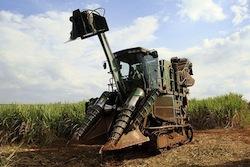 Sugarcane_harvesting_equipment_Piracicaba_  Mariordo Mario Roberto Duran Ortiz