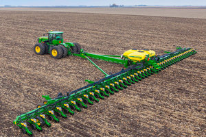 corn-plant-14