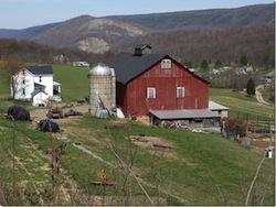 American Farm Photo: John Helmstetter Farm