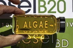 Algal-B20 at Propel Photo: Michael Macor, The Chronicle