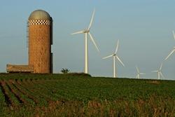 Optimum Renewables Wind Farm