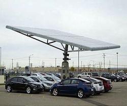 envision-solar-solar-tree-array-lg