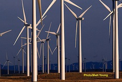 Utility owned Wind-farm