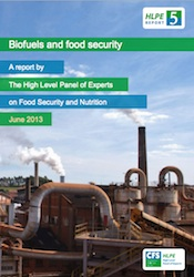 HLPE Biofuels and Security Report