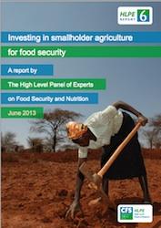 HLPE Report Smallholder Ag,jpg