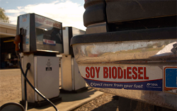 Soybiodiesel-bumper-sticker1