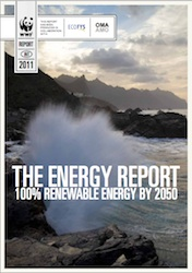 WWF The Energy Report cover