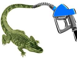 gator-fuel-web