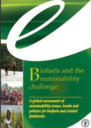 UN FAO Biofuels and the Sustainability Challenge