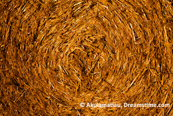 Wheat Straw Bale Abstract @Akulamatiau