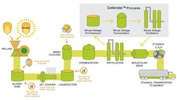 Cellerate Process