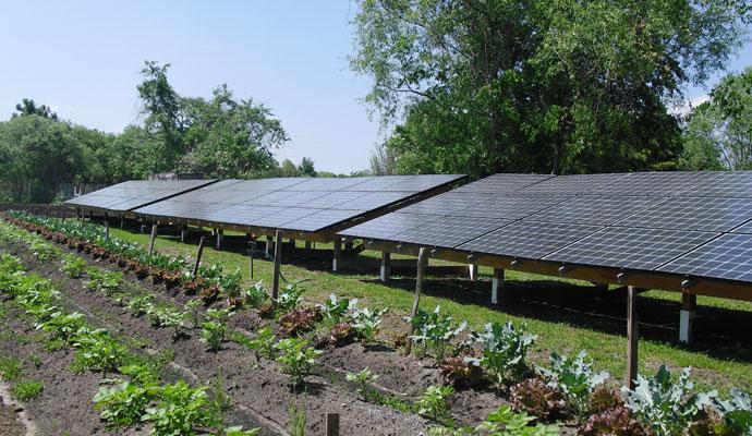 solar panels in ag