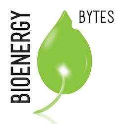 BioEnergyBytesDF1