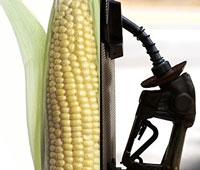corn-ethanol-3