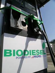 Biodiesel at the pump