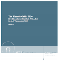 The Electric Grid 2030