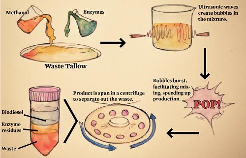 bubblebiodiesel1