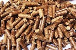 bagasse-pellets