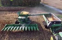 corn-harvest-2