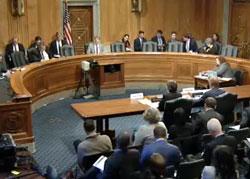 senate-hearing